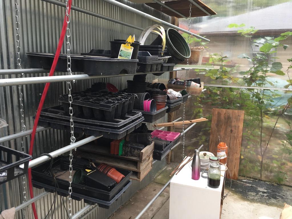 shelves-organized